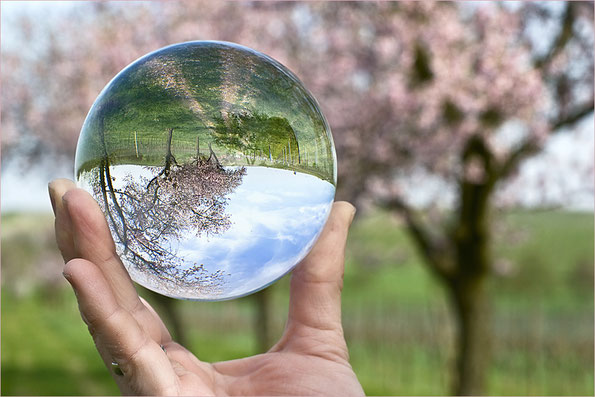 Sichtweise, Perspektive