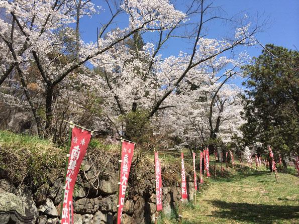 長命寺大日堂への参道