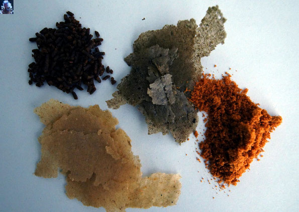 Trockenfutter für Fische. Flakes, Granulat und Pulver