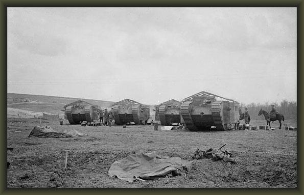 Chimpanzee Valley 1916