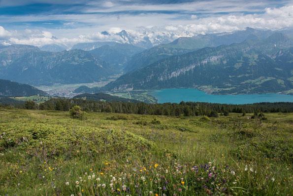 Blick vom Gratweg auf Thumer See, Interlaken und der Bergwelt um Eiger, Mönch und Jungfrau