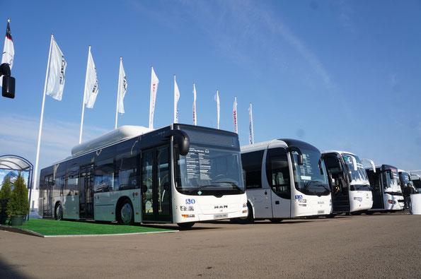 Выставка-фестиваль «Мир Автобусов-2013»