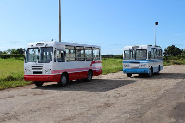 Продукция завода Caisa - 20-местный автобус «Diana». Фото фирменное