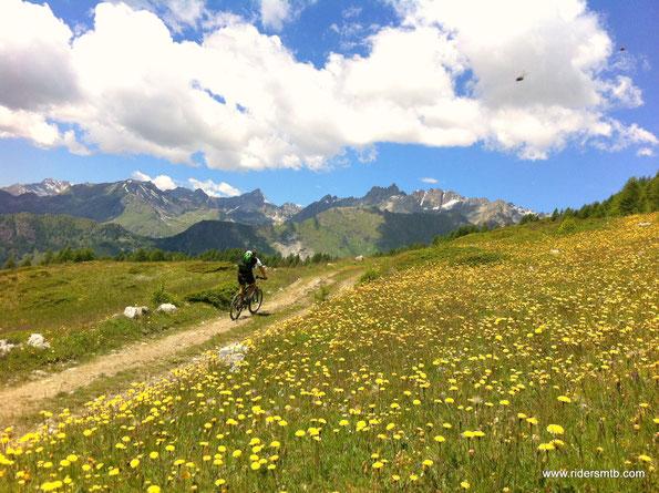 .....il panorama fa dimenticare i km sin ora pedalati duramente
