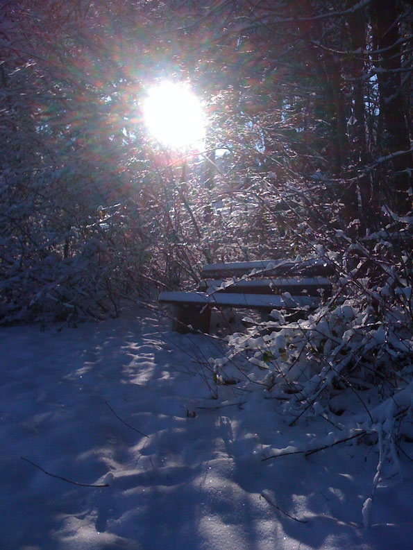 Regen, Schnee und Sonne, alles zu erleben beim Schiessen, es kommt auf den Betrachter an!