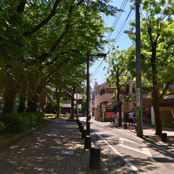 手前右:西池袋公園(池袋西駐輪場が見えてます)、手前左:バスケなどをするコートがあるフェンスのある公園。池袋駅から「西池袋公園」を目指して「ホテルメトロポリタン」と「東京芸術劇場」の間の道を行き、「西池袋以丁目の交差点」を渡りまっすぐ100m。この写真の場所が見えます!駅から5分ほどなのに緑がこんもりとした閑静な住宅街になるのが不思議。こういう都会のオアシスのような場所が好きです♥