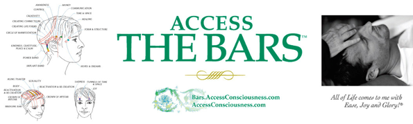 Access Consciousness Bars, Paris 17, Pierre Villette