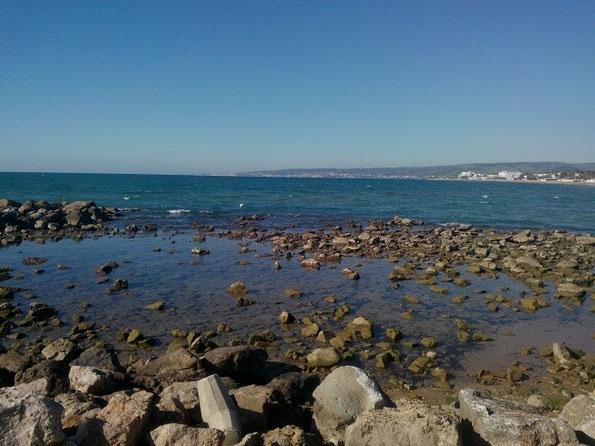 Nei litorali rocciosi è sempre molto bello fare snorkeling alla ricerca di conchiglie.