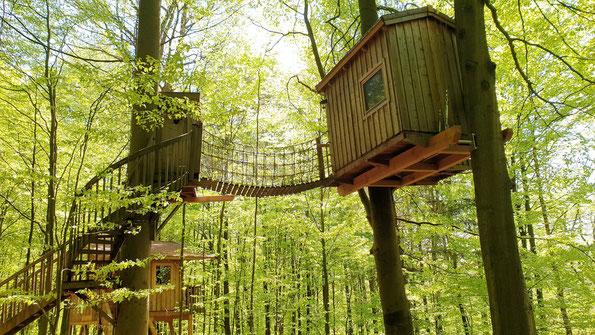 Baumhaus mit viel grünem Laub drumherum