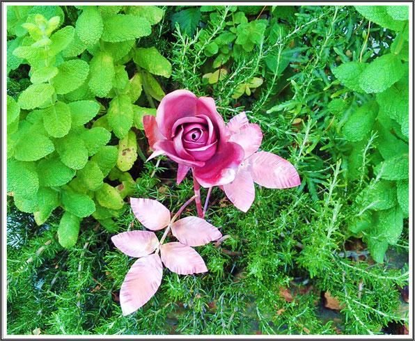 薔薇 ◆2016バージョン◆ ①