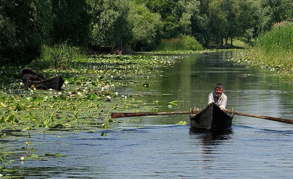 Le delta ou vit le peuple Lipovène.