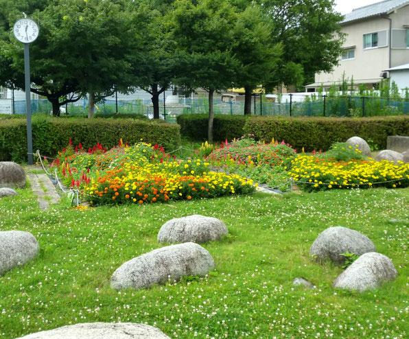 今はお花が咲く・・古井戸公園