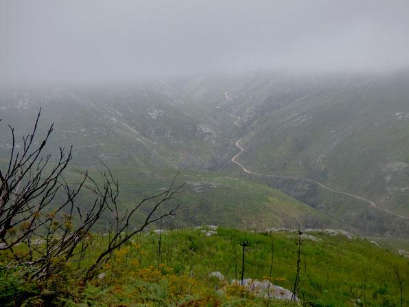 """Outeniqua Pass - Aussicht an der Haltebucht """"4 Passes"""""""