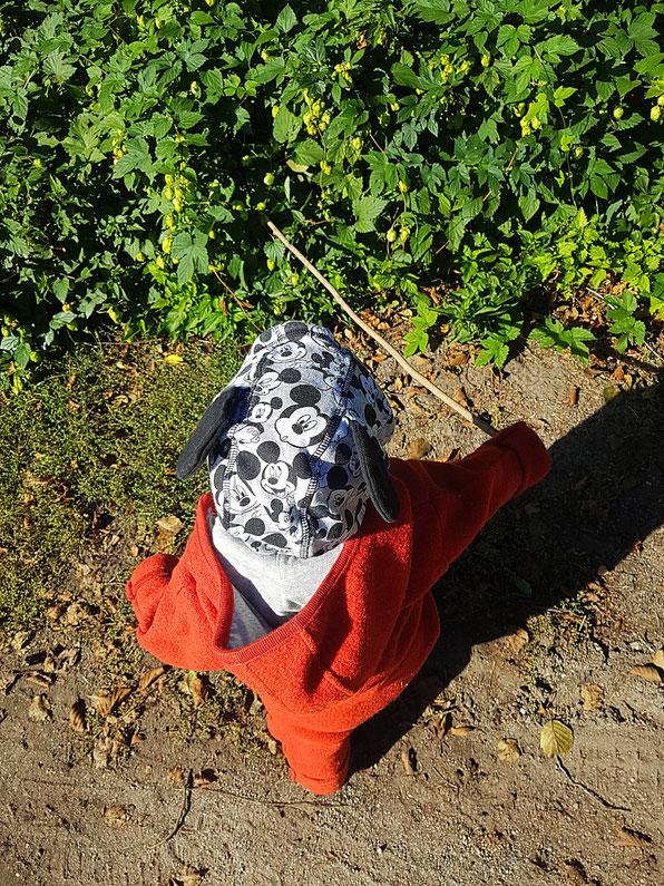 Kleinkind spielt im Wald mit einem Stock. Foto zum Blogpost Öko-Mamas Dilemma auf Patschehand.de.