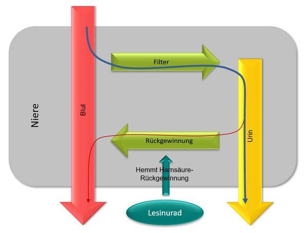 Grafik Nierenfunktion mit Zurampic / Lesinurad