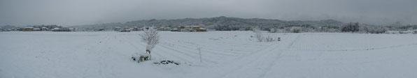 2012.12.9雪模様の悠々ファーム