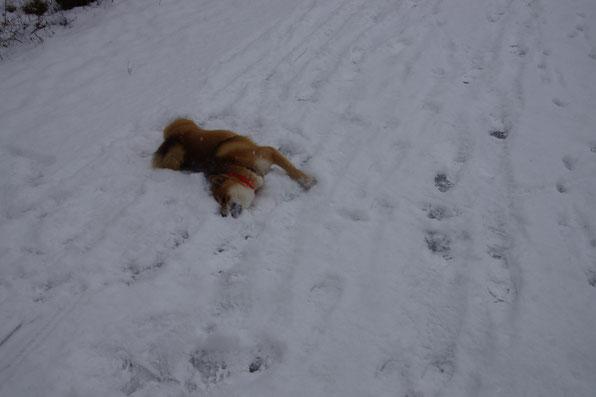 Ein Schneebad tut nach dieser Anstrengung gut