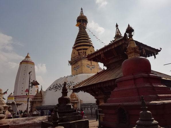 スワヤンブナート寺院。