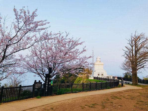 隠岐の島 京見屋分店 ブログ 西郷岬灯台