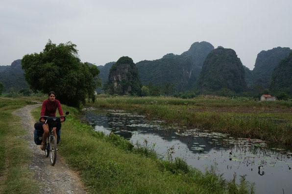 Balade à vélo entre les rizieres