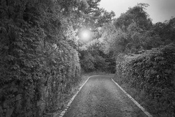 Carretera salida de Corterrangel a Aracena