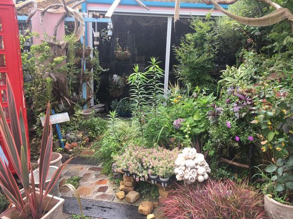 庭づくり 依頼 廿日市 庭のリフォーム 庭工事 広島 ガーデン かわいい庭