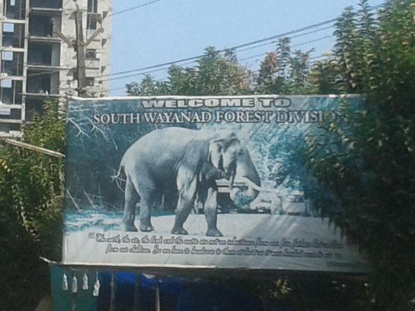 Schild Elegfant Wayanad
