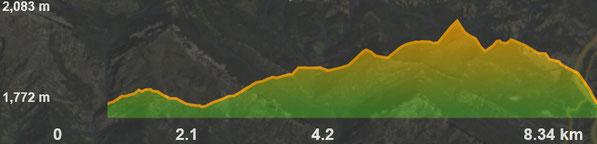 Perfil de la ruta circular del coll de Pendís al Moixeró