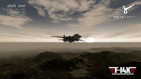 Aerosoft F-14X in Prepar3Dv3.1