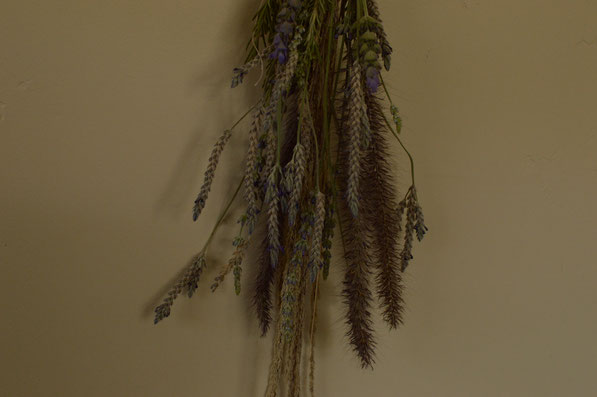 Lavender and ornamental grasses, dried arrangement
