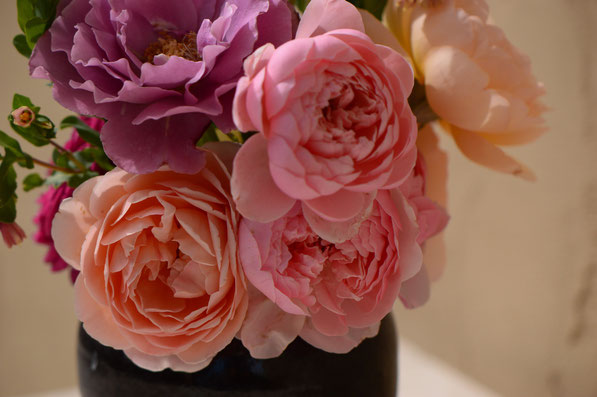 blooms in the Monday Vase