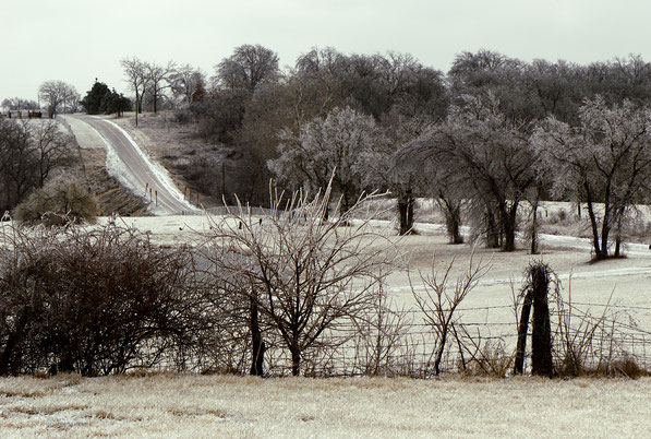 Icy, road and trees
