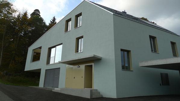Neubau EFH Klushau, Schaffhausen I Fassade