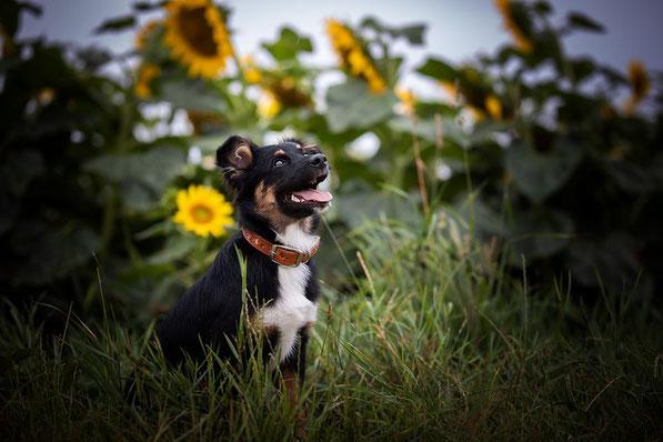 5 Monate, Foto von Katja Podobnig
