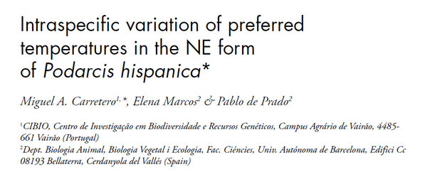 Intraspecífic variation of preferred temperatures in the NE form of podarcis Hispanica. 2006