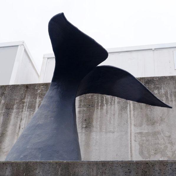 Wal-Schwanzflosse auf dem Dach von Terra Azul, Sao Miguel, Azoren