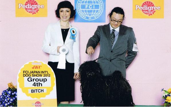 カルーア:FCIジャパンインターナショナルドッグショー2012グループ4席