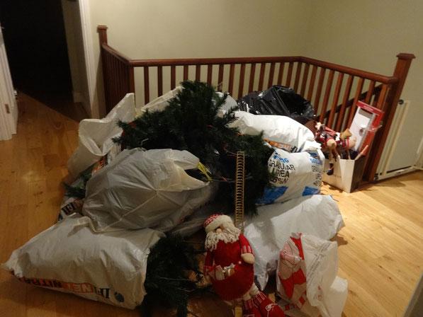 So klein kann man einen Weihnachtsbaum verpacken