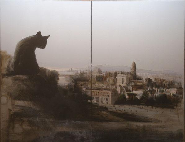 Gato sobre Alcazaba y Alcazabilla. Fernando Wilson. 2014