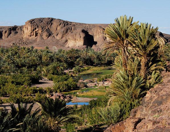 Ouarzazate et oasis