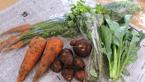 炭素循環農法 野菜