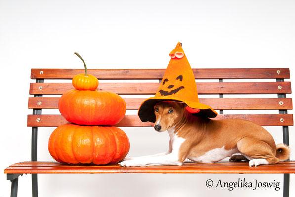 Happy Halloween 2012
