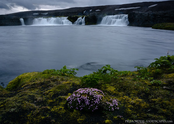 Skinandi, the waterfall of the short but powerful Svartá. Just a few meters downstream it flows into the Jökulsá á Fjöllum
