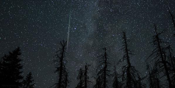 perseids, sternschnuppe, shooting star, Milchstraße, Milkyway