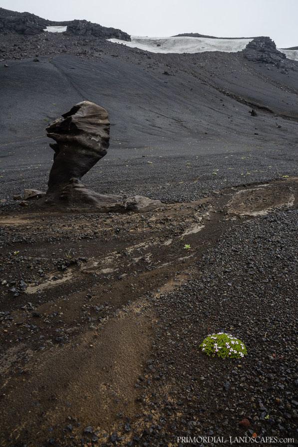 Dyngjufjalladalur, Lambagras, Öskjuvegur, Dyngjufell, Askja, Ódáðahraun, Trekking