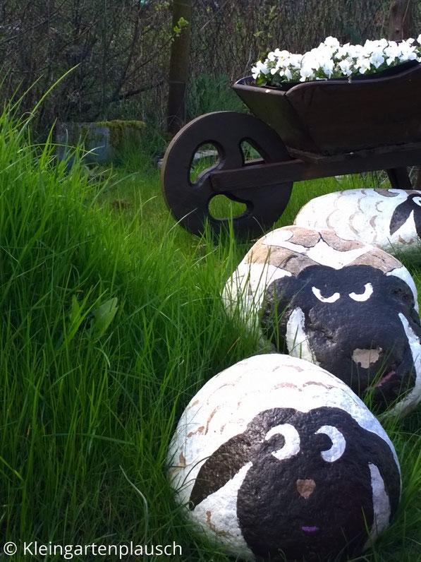 Blick nach vorne: Zwei Steinschafe an grünem Grashügel, hinten Holzschubkarre und noch ein Schaf ...