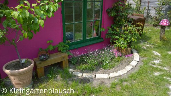 Vorderseite der pinken Hütte mit grünen Fenstern, davor links ein Mirabellenbäumchen im Topf, auf einer Holzbank eine Steinkatze, rechts davon ein kleines steinumgrenztes Beet, rechts davon die Rose generous gardener