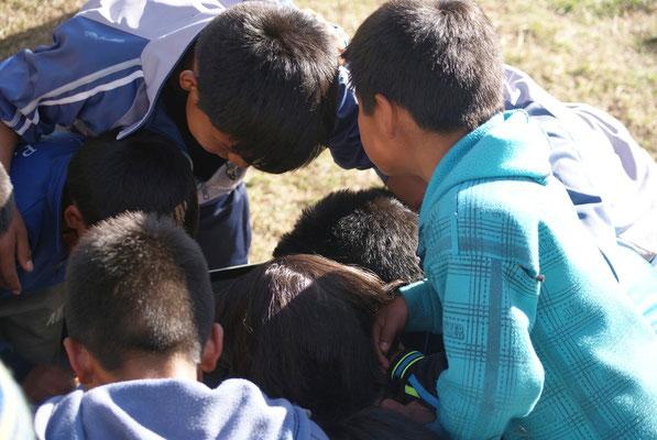Kinder beim Anschauen des Filmmaterials