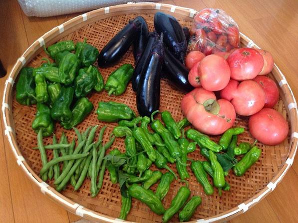 新鮮 有機 無農薬 自然農法 野菜