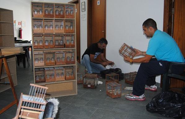 Organizando y limpiando. En los estantes,  muchas de las nuevas jaulas compradas. Octubre de 2012.